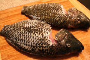 grilling tilapia